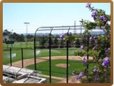 Outdoor baseball field from behind home plate